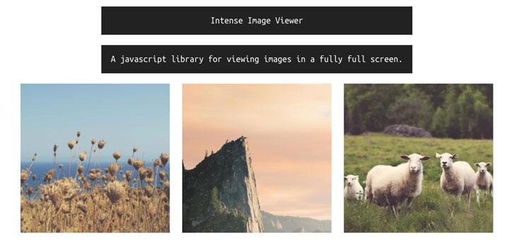 Intense-Image-javascript