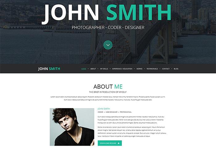 Online CV WordPress Theme